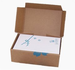 corrugated printed mailer