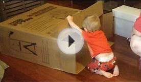 ADVENTURES IN CARDBOARD BOXES!