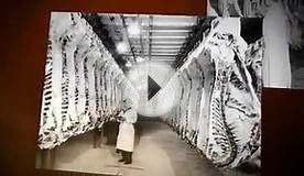 Meat Packing Industry 1900