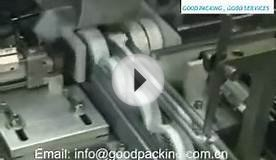 Tape Sleeve Sealing Shrink Packing Machine.wmv
